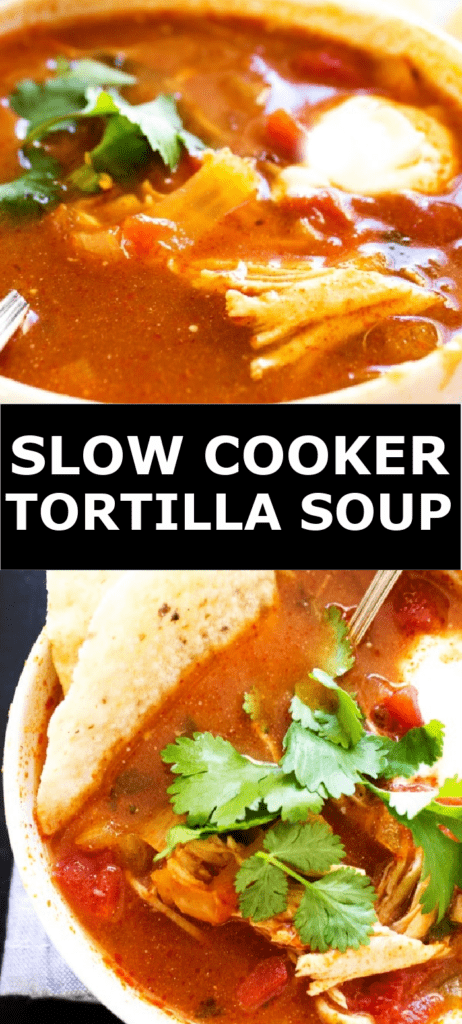tortilla soup with garnish of cilantro, sour cream, tortilla chips