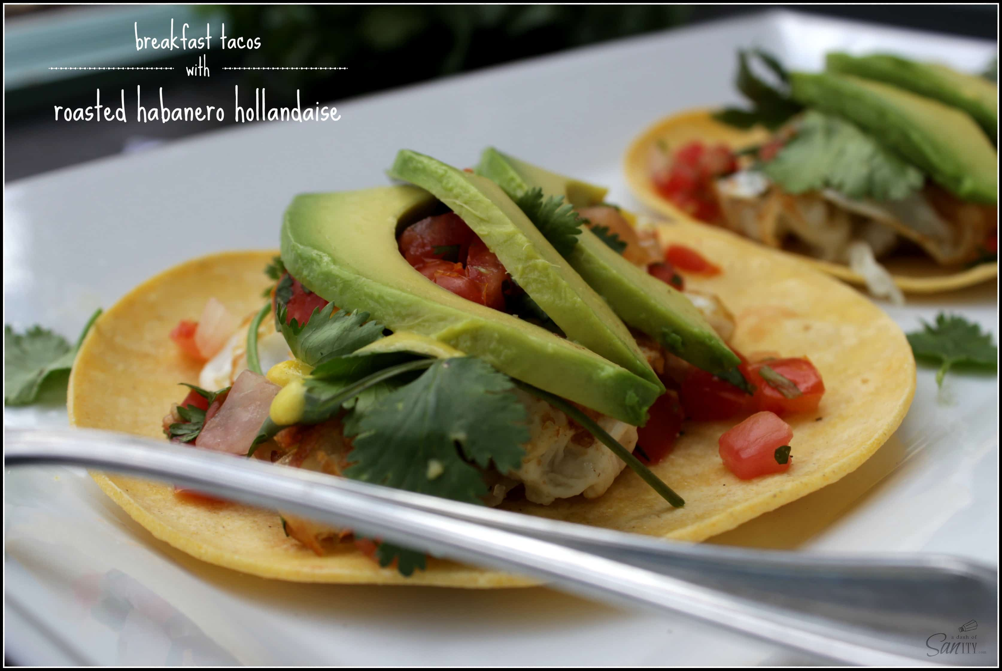 Breakfast Tacos with Roasted Habanero Hollandaise