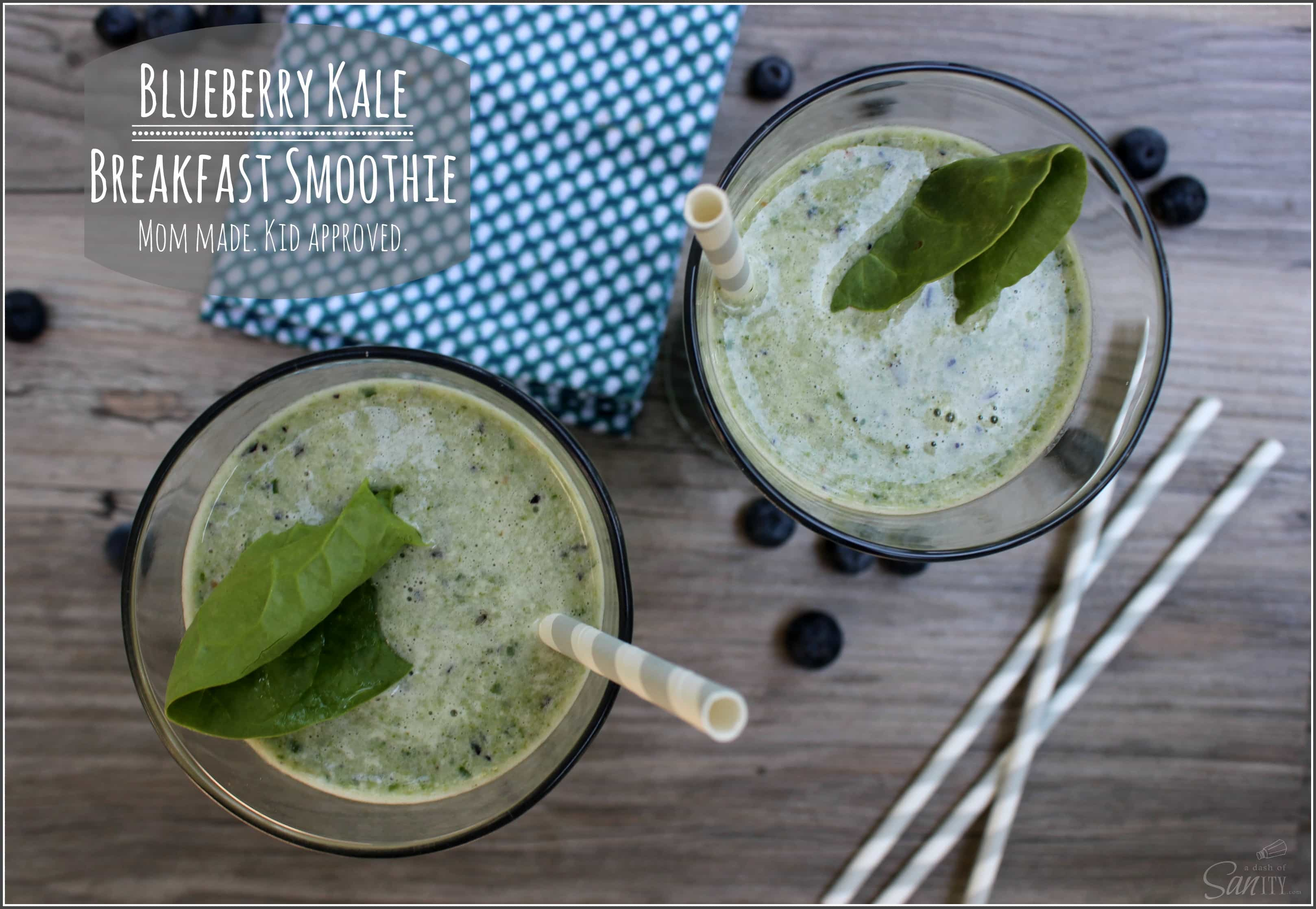Blueberry Kale Breakfast Smoothie | a.k.a Smurf Smoothie
