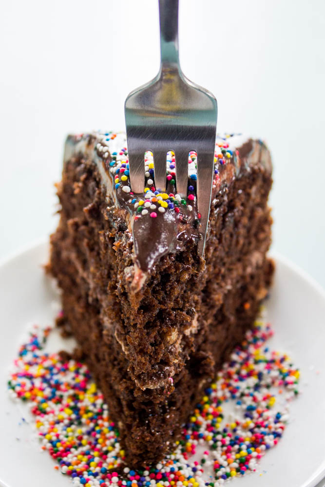 close up of Double Chocolate Nutella Cake with a fork about to take a bite out, with rainbow sprinkles on top and on the plate