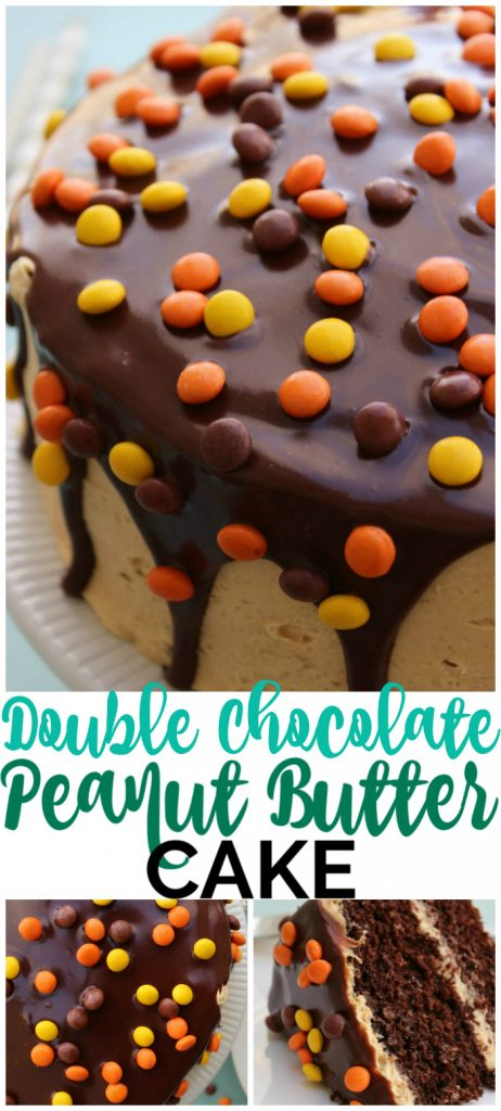 Double Chocolate Peanut Butter Cake pinterest image