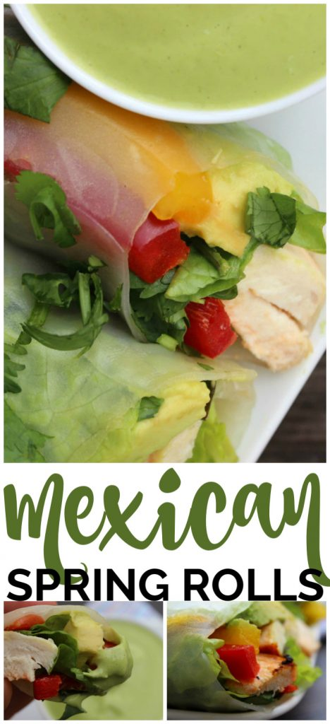 Fresh Mexican Spring Rolls pinterest image
