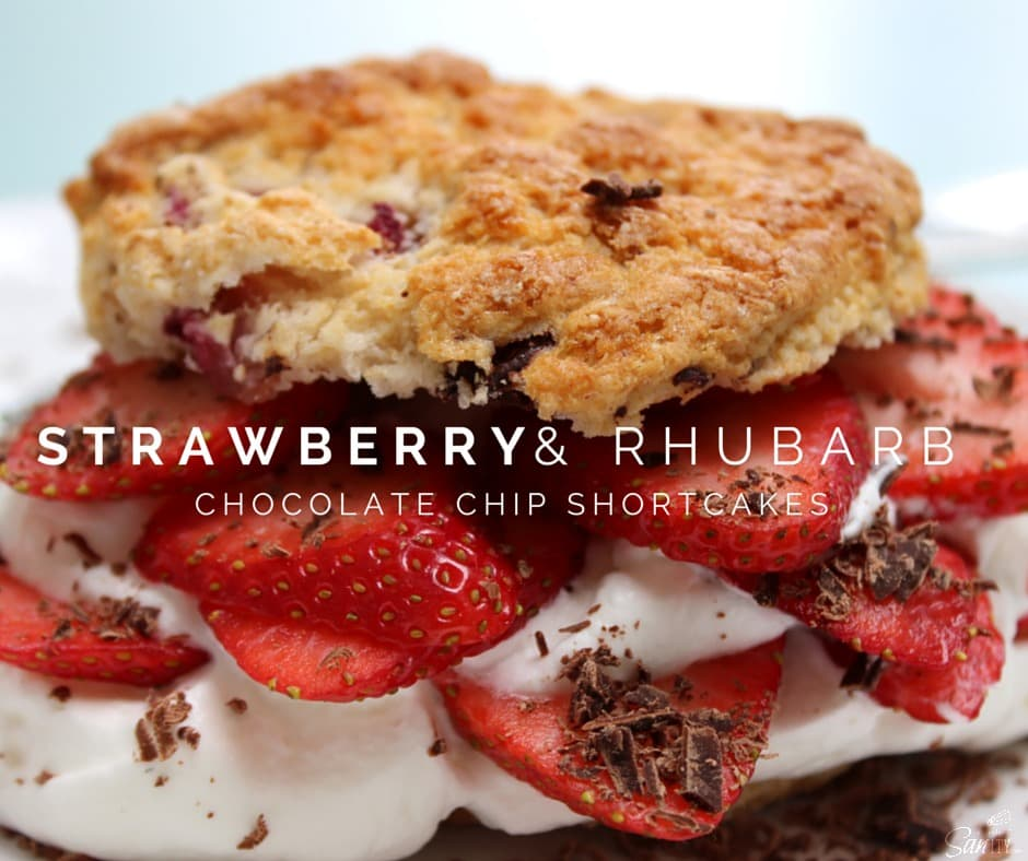Strawberry & Rhubarb Chocolate Chip Shortcakes is a homemade rhubarb & chocolate chip biscuit, with fresh strawberries, whipped cream, & chocolate shavings.