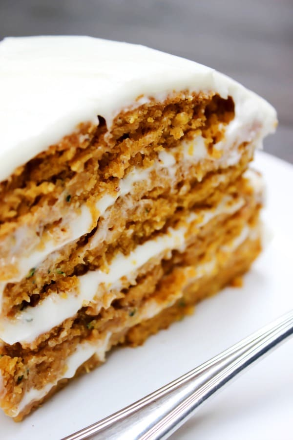 close-up shot of the slice of cake.