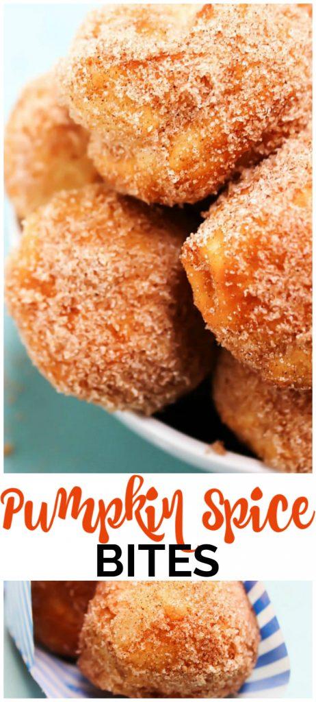 Pumpkin Spice Bites pinterest image
