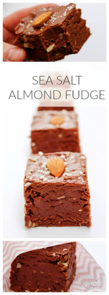 Sea Salt Almond Fudge LONG PIN