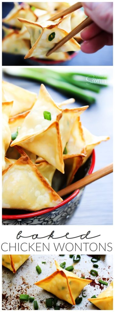 Baked Chicken Wonton LONG PIN 2