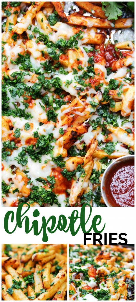 Chipotle Fries pinterest image