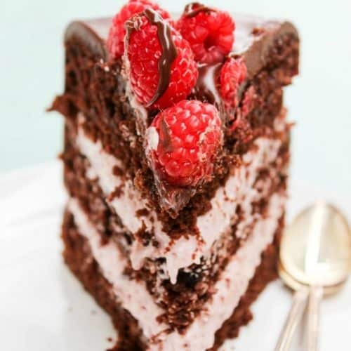 Super Chocolate Raspberry Layer Cake A Dash Of Sanity Funny Birthday Cards Online Drosicarndamsfinfo
