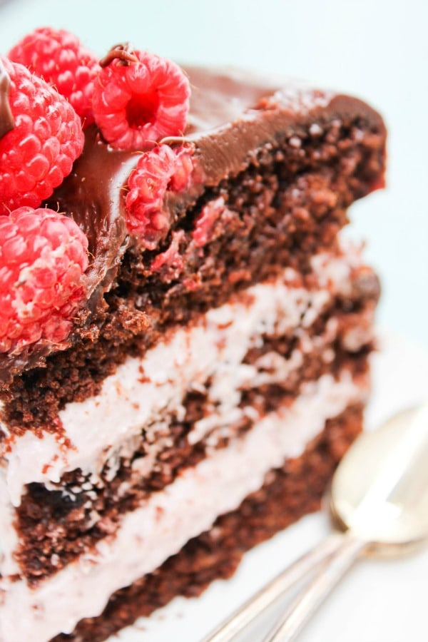 Chocolate Raspberry Layer Cake - A Dash of Sanity