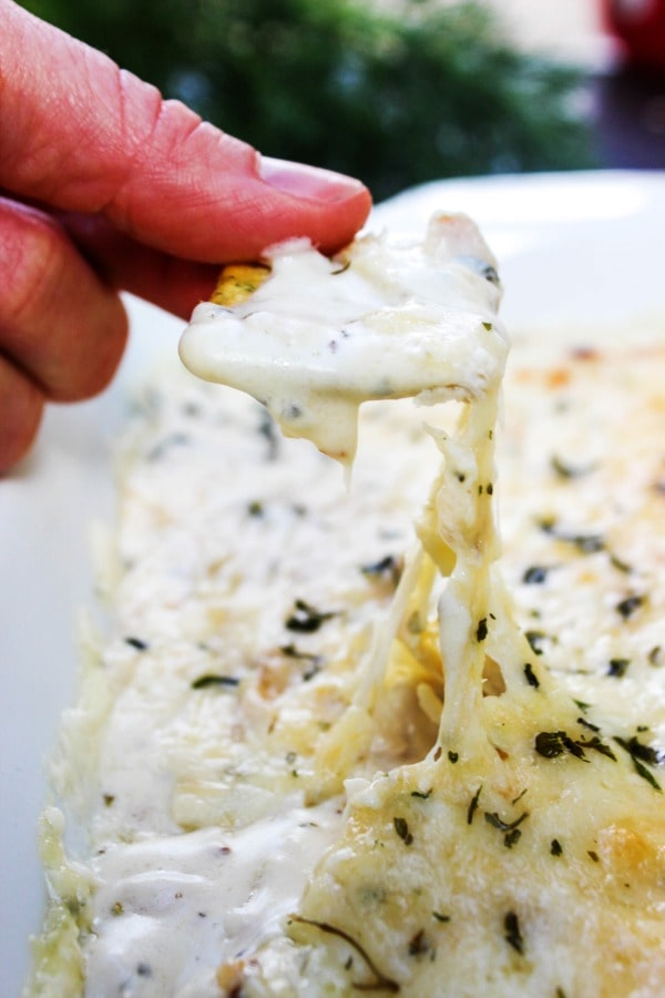 """Skinny"" Chicken Alfredo Dip is a light version of my favorite cheesy & chicken dish, converted into a dip. This dip is a soon to be a snack-time favorite."