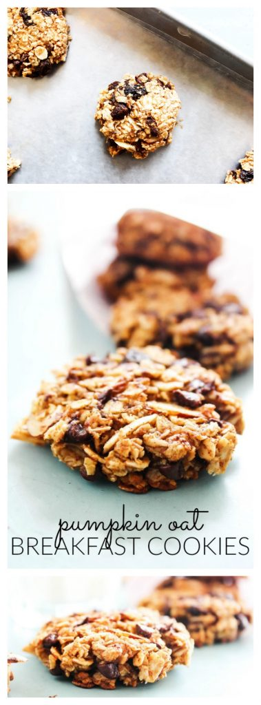 pumpkin-oat-breakfast-cookies-long-pin