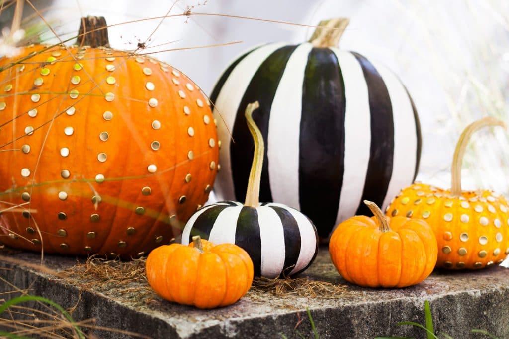 chic-pumpkins