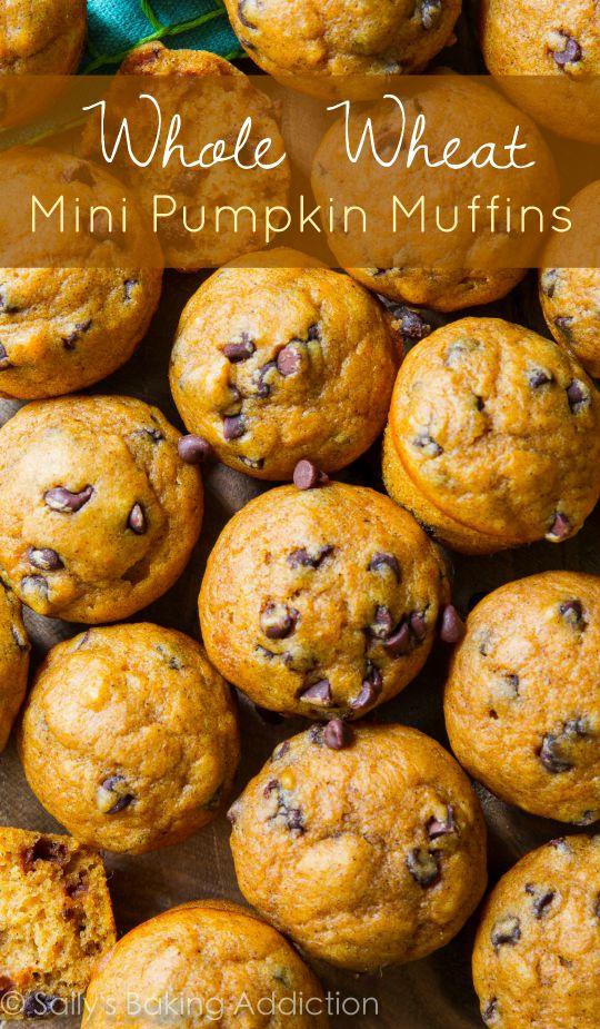 whole-wheat-mini-pumpkin-chocolate-chip-muffins-1