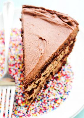 INCREDIBLY DELICIOUS CHOCOLATE CAKE RECIPES