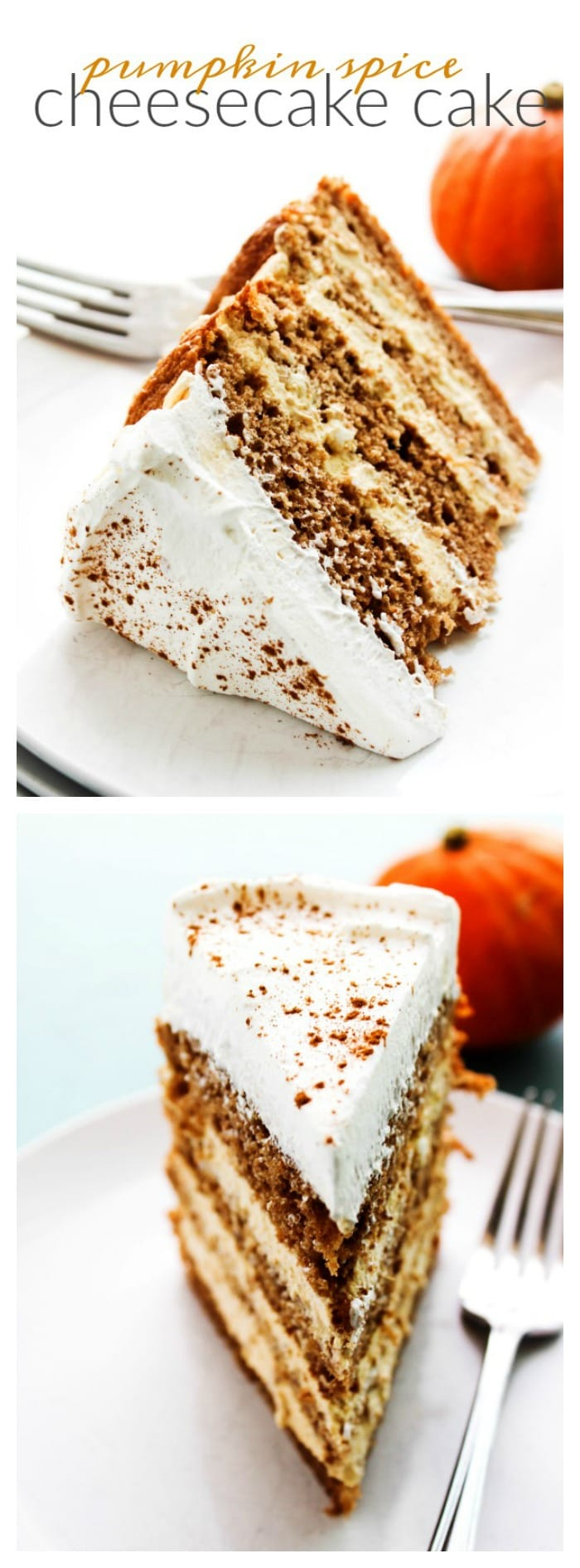 Pumpkin Spice Cheesecake Cake - A Dash of Sanity