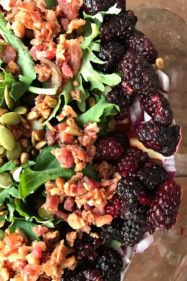 LAYERED HOLIDAY KALE BERRY SALAD