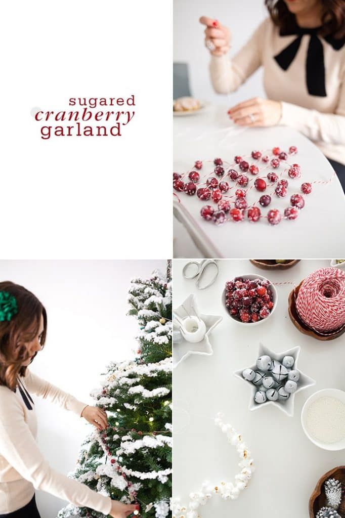 SUGARED CRANBERRY GARLAND