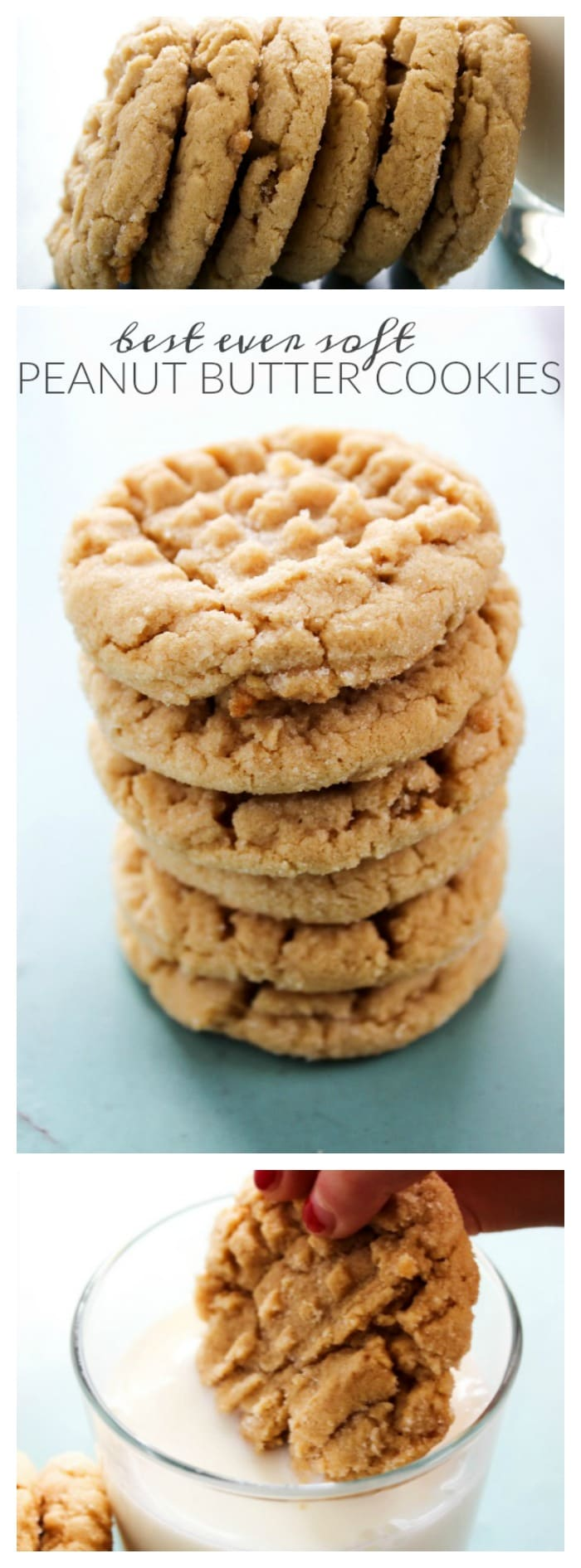 Best Ever Soft Peanut Butter Cookies - A Dash of Sanity