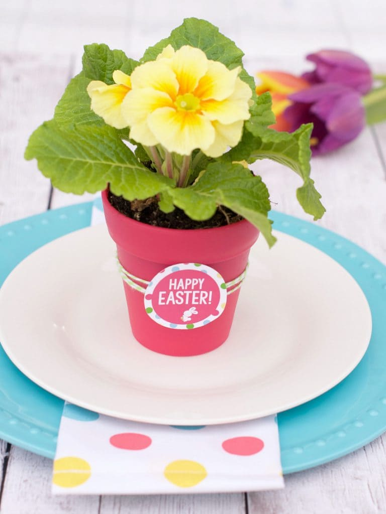 Spring Flowers Gift Idea with Free Printable