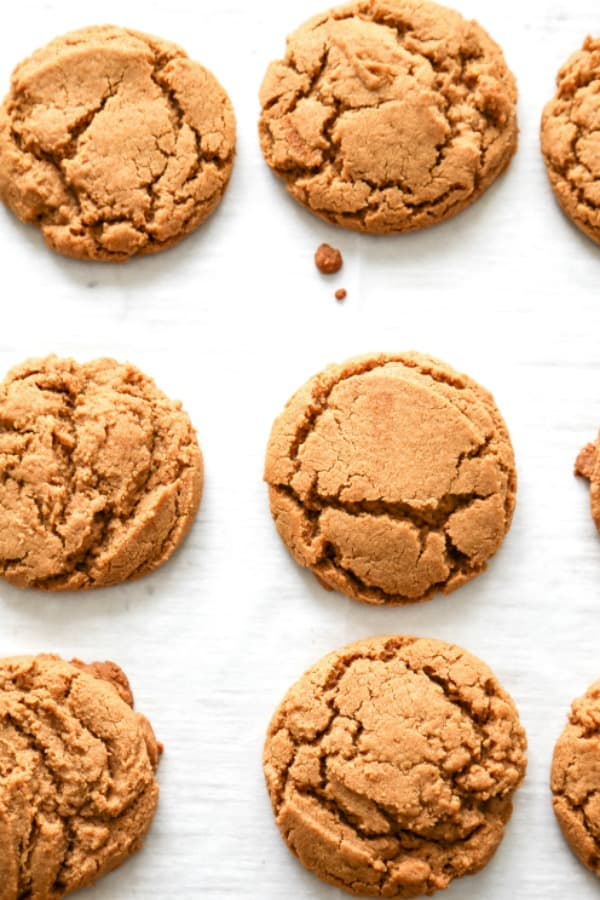 Gingersnap Cookies A Dash Of Sanity