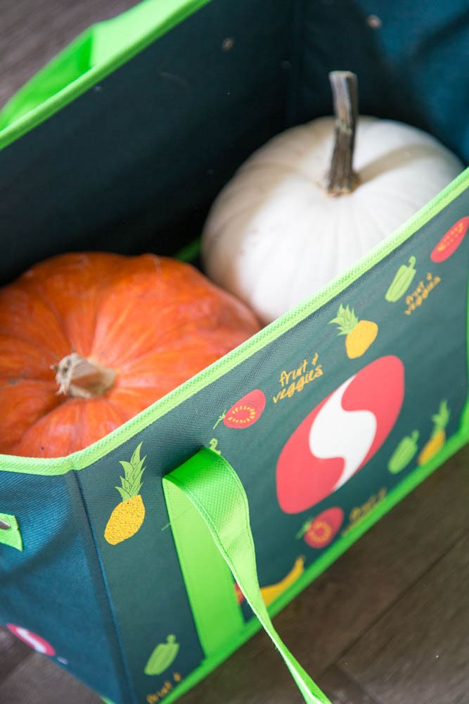 photo of a bag with pumpkins in it.