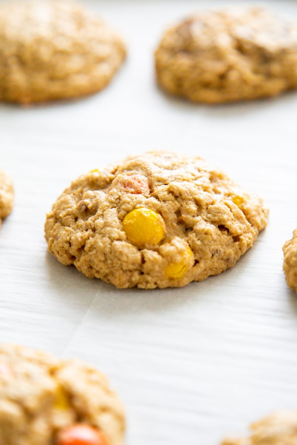close-up photo of one cookie on parchment.
