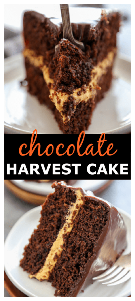 chocolate harvest cake collage for pinterest.