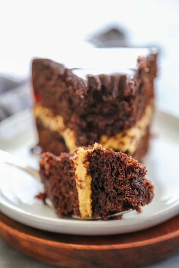close-up of a slice cake with a fork.