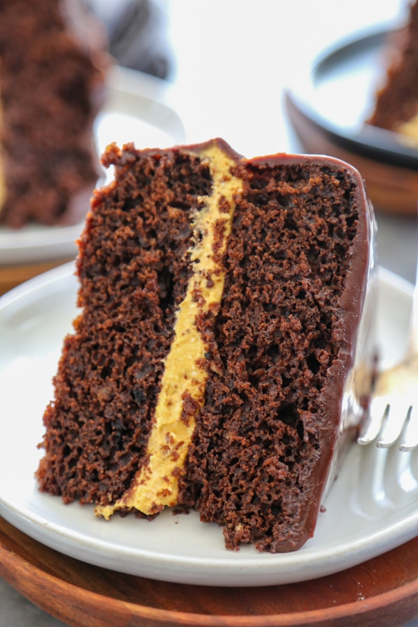 close up of a slice of harvest cake.